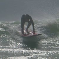 Surfin' Safaris