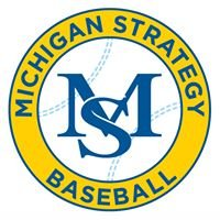 Michigan Strategy Baseball Training