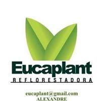 Eucaplant