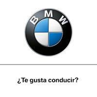 BMW Cabrero Motorsport