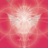 Evolve - Sanctuary for the Soul