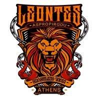 Leontes Aspropurgou Draculino Team