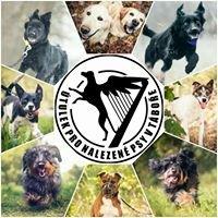 Útulek pro nalezené psy v Táboře