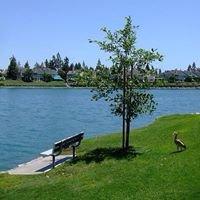 South Lake Woodbridge