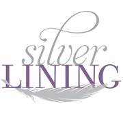 Silver Lining: A Holistic Wellness Center and Boutique