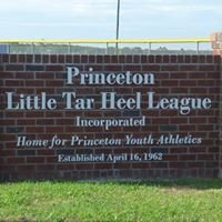 Princeton Little League