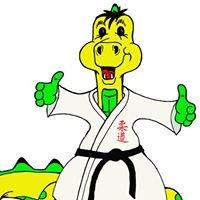 Judo-Schule Diessenhofen