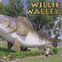 Unite to restore Willie Walleye - Baudette, MN
