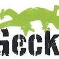 Gecko Surf & SUP School Rhosneigr