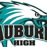Auburn Drive High School