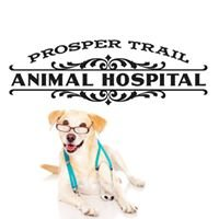 Prosper Trail Animal Hospital
