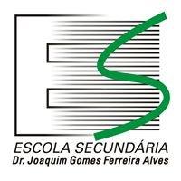 Escola Secundária Dr. Joaquim Gomes Ferreira Alves [oficial]