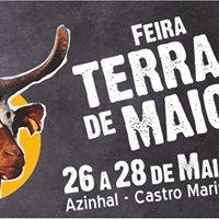 Cabra Algarvia  - Algarvia Goat