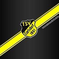 TSV Carlsdorf