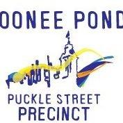 Puckle Street Precinct