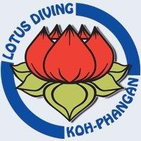 Lotus Diving
