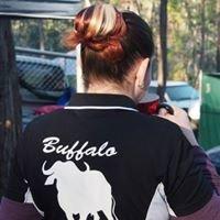 Buffalo Bows