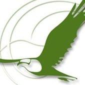 Bio - Agriturismo Il Falco