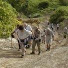 Hike Barbados