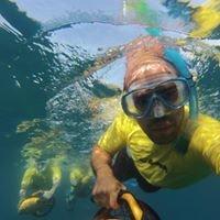 Yellow Submarine Sea Scooter Rental