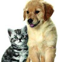 Máme rádi zvířátka