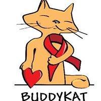 Buddy Kat