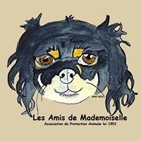 Les Amis de Mademoiselle (LADM), Association de Protection Animale