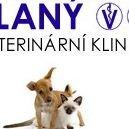 Veterinární klinika Slaný
