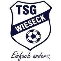 TSG Wieseck - JugendFörderzentrum