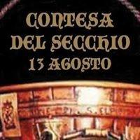 Contesa del Secchio