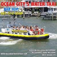 Buzz Boat Water Taxi