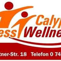 Calypso Fitness & Wellness