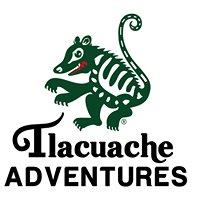 Tlacuache Adventures