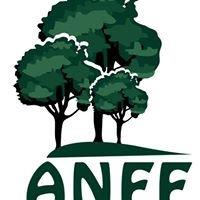 Australian Native Farm Forestry