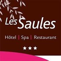Les saules : Hôtel, Spa et Restaurant