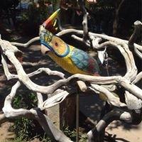 BG Bird Garden