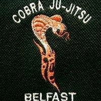 Falls Park Jujitsu Club Belfast