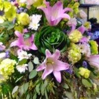 Bay Flowers