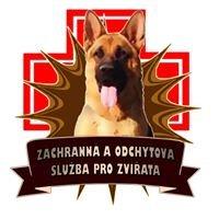 Petr Prokeš - záchranná a odchytová služba pro zvířata