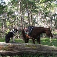 Springvale Horse Treks and Camping