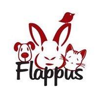 Stichting Flappus Zwolle
