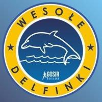Wesołe Delfinki - GOSiR Osielsko