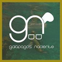Galápagos Naciente