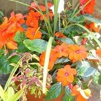 Moore's Organic Nursery Garden Centre