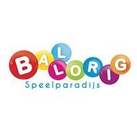 Ballorig Groningen