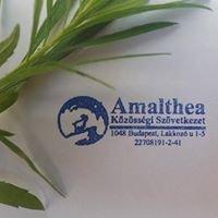 Amalthea Közösségi Szövetkezet