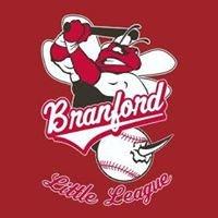 Branford Little League