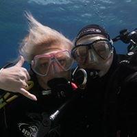 ViewfromtheBlue Underwater Filming