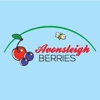 Avonsleigh Berries