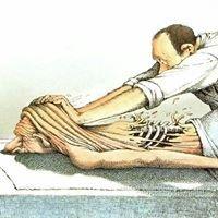Praxis für Physiotherapie Katharina Grobbel